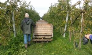 2-11-16-dronten-boomgaard